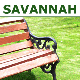 savannah icon